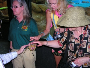 Rachelle Siegrist and Diane Mason learn hands-on about the zoo's Bearded Dragon, Darwin, from Debbie