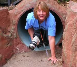 Kim Diment gets caught exploring the tunnel in the Black Bear habitat at the Rolling Hills Zoo in Salina, KS.