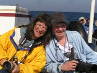 SAA artists on a cruise