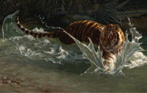 Greg Beecham – Siberian Swirl