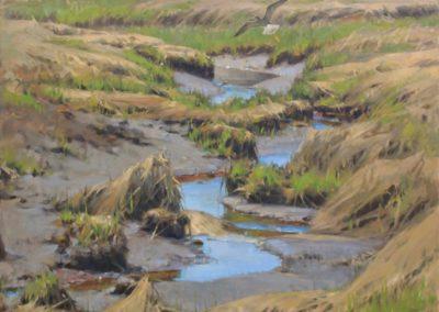 Coe, James - Salt Marsh Spring