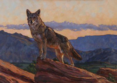 Rogers, Julia - Peak At Daybreak