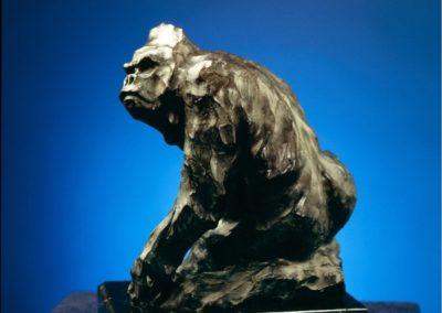 Salari Sander, Sherry - Gorilla