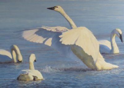 Dunphy, Kathleen  - Wingbeats