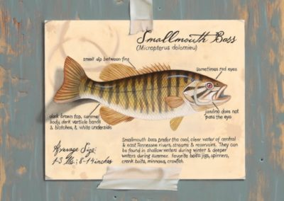 Engel, Camille  - Fish Tale