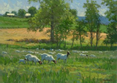 Geise, Ann  - Goats Galore