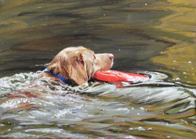 Gleim, Lisa  - Red Frisbee