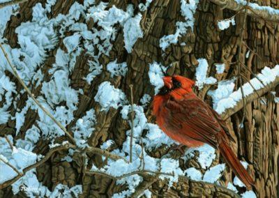 Lalingo, Judy  - Cardinal Memory