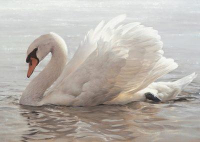 Pepin, Patricia  - Swan Flower