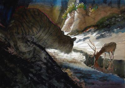 Rankin, David  - Ranthambhore Ambush