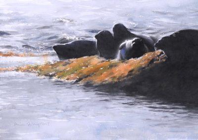 Sjoberg, Mans - Digesting Arctic Cod