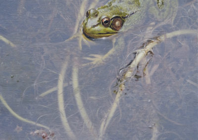 Frog painting by SAA Master Signature Member, Patricia Pepin